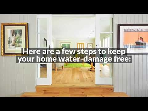 The Importance Of Cleaning Water Damaged Carpet Asap All Kleen Carpet Cleaning How To Clean Carpet Carpet Care Rugs And Carpet