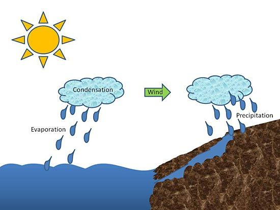 Environmental engineering science project drawing of the water environmental engineering science project drawing of the water cycle showing the sun warming an ocean water droplets are rising from the oc ccuart Images