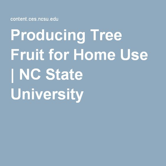 Producing Tree Fruit for Home Use | NC State University