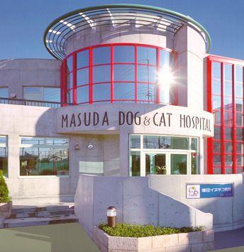 Masuda Dog and Cat Hospital - Osaka, Japan