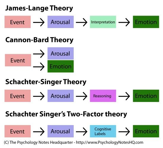 cannon bard theory of emotion Theories of emotions as formulated by different psychologists are : 1 james-lange theory 2 cannon-bard theory 3 cognitive theory each theory emphasizes different aspects of emotion.