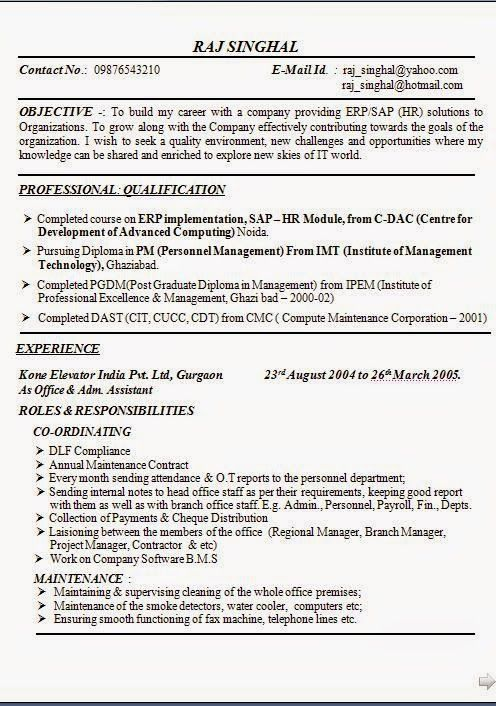 model resume download Sample Template Example of ExcellentCV - what are my career objectives