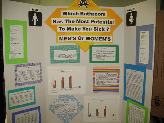 science fair boards - Google Search | Science Fair Projects ...