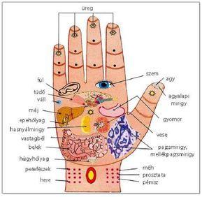 onkológia és magas vérnyomás Bokeria a magas vérnyomás kezeléséről