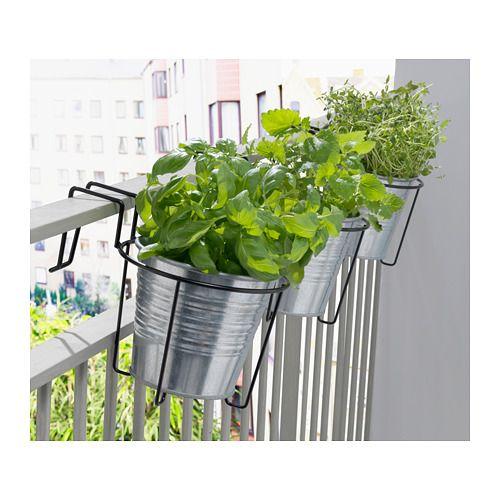 Frische Einrichtungsideen Und Erschwingliche Mobel Topfpflanzen Terrasse Blumentopf Balkon Pflanzen