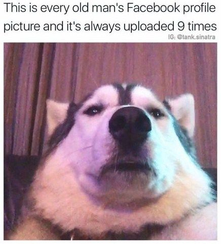 This Is Every Old Man S Profile Picture And It S Always Uploaded 9 Times Cute Memes Meme Friendship Memes Funny Funny Spongebob Memes Funny Friend Memes