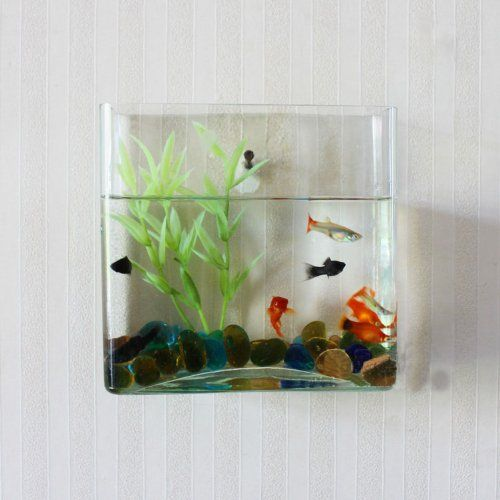 Wall mount hanging beta fish bubble aquarium bowl tank for Square fish tank