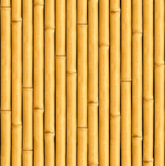 Texture Seamless Bambu Texture Wood Pinterest Texture