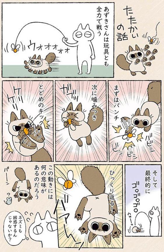 ネズミも困惑 戦うあずきさん シャム猫あずきさんは世界の中心 6 画像3 6 レタスクラブ ネズミ シャム猫 コミック
