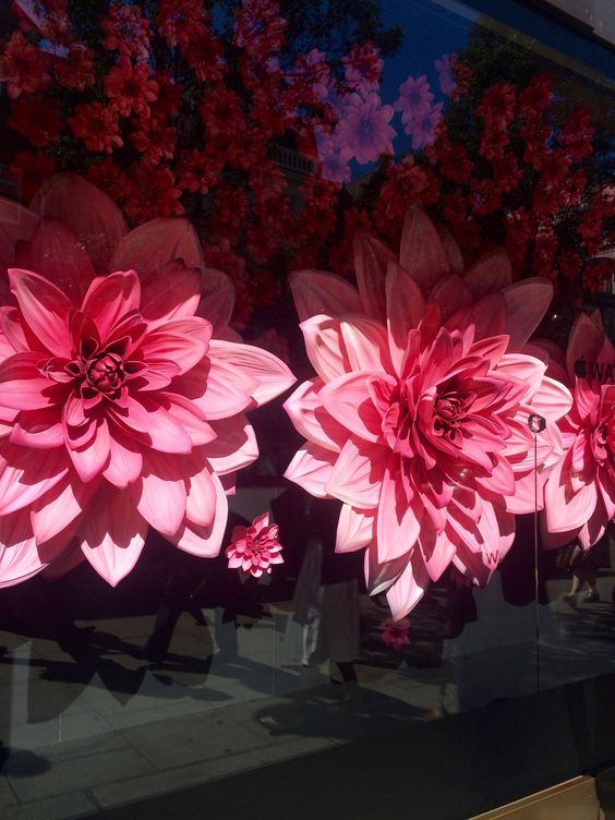Flowers - Selfridges   Photo credit: Julie Morel