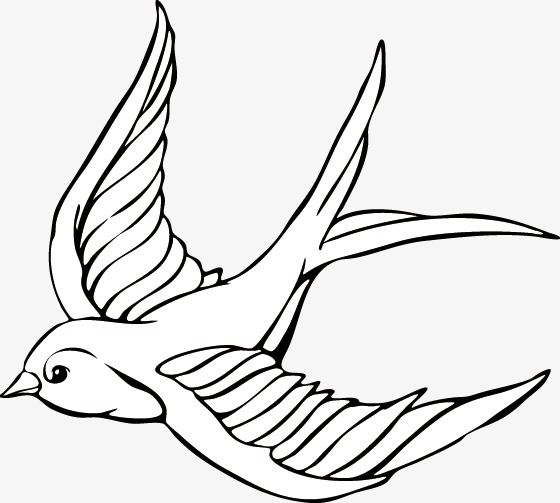 Flying Swallow Swallow Animal Hand Painted Png Transparent Clipart Image And Psd File For Free Download Drawings Horse Tattoo Bird Drawings
