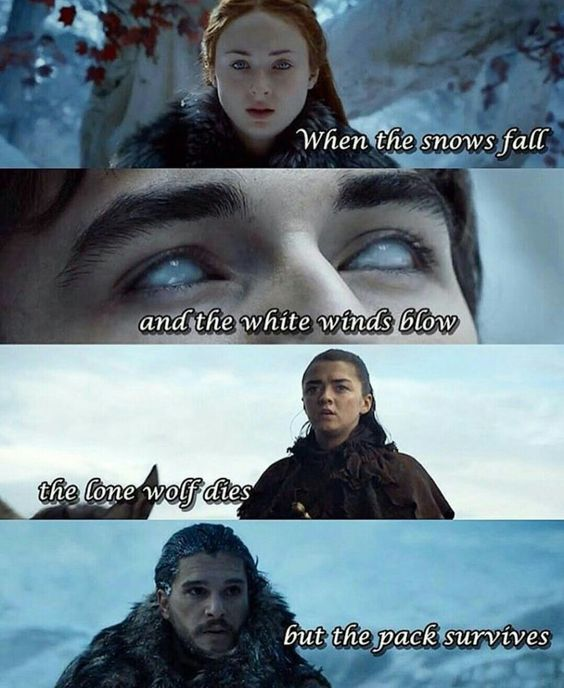 When the snows fall and the white winds blow, the lone wolf dies but the pack survives. Reunite, House Stark! Game Of Thrones. ASOIAF