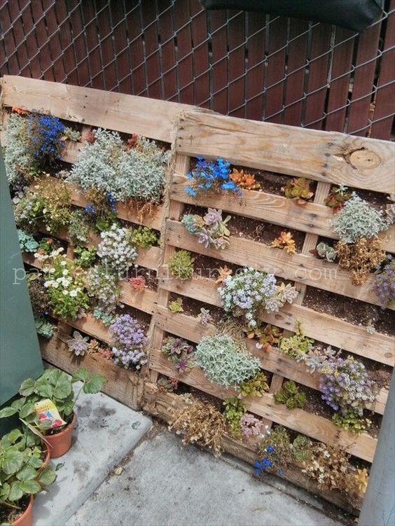 Pallet vertical planter pallet garden pallet furniture for How to make a recycled pallet vertical garden