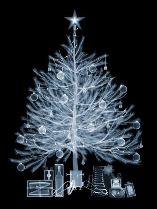 X-Ray Image of Christmas Tree and Presents by Nick Veasey
