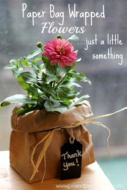 Need a small gift for someone? Try wrapping a simple garden flower in a brown bag tied off with raffia. Frugal and sweet!: