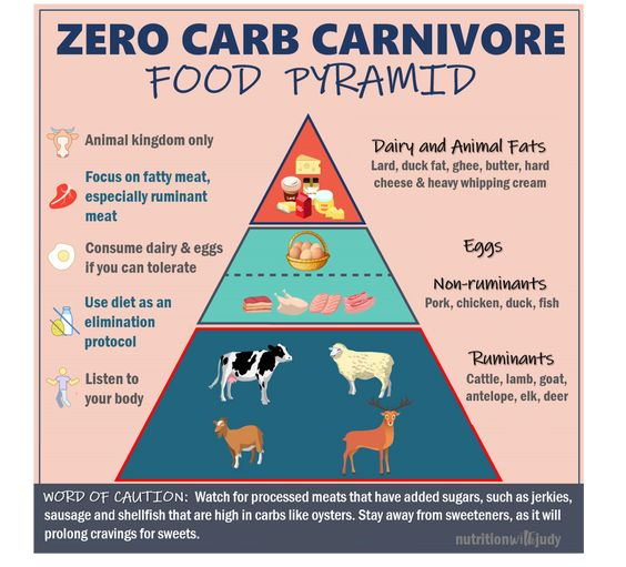 Carnivore Diet for Beginners — How to Start the Zero-Carbohydrate Carnivore Diet