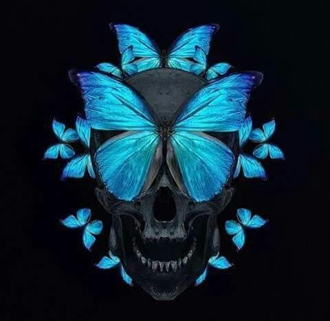 Pin By Kimberly Thorsen On I Skulls Skull Artwork Skull Art Skull Pictures