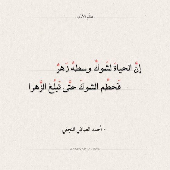 شعر أحمد الصافي النجفي إن الحياة لشوك وسطه زهر عالم الأدب Arabic Calligraphy Calligraphy