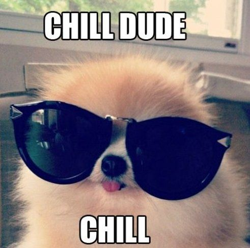 Image result for best way to chill meme