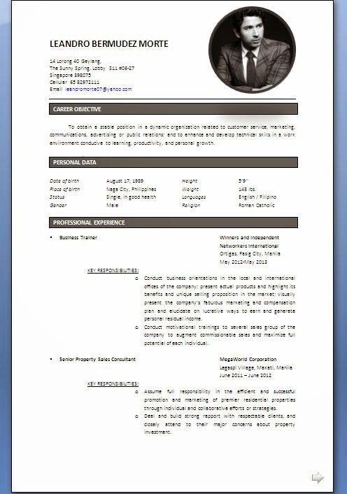 curriculum vitae skills Sample Template Example ofExcellent Vitae - resume format singapore