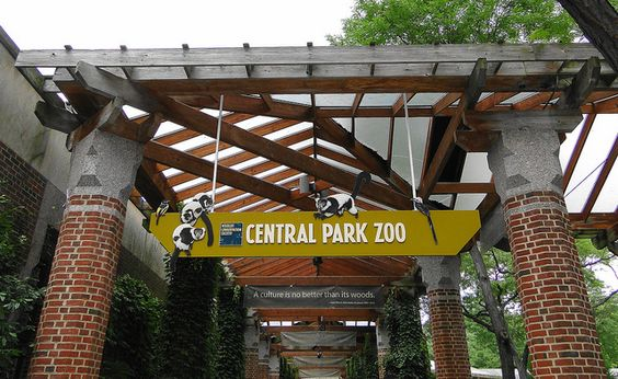 Visit the Central Park Zoo and other amazing sites in New York City on your next vacation! Contact Eva Greenwald to help plan your next trip at 203-221-3171, 800-499-7245, egreenwald@cruiseplanners.com