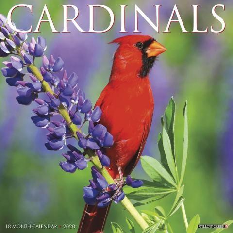 Cardinals 2020 Calendar Free Epub Books Wall Calendar Free Ebooks