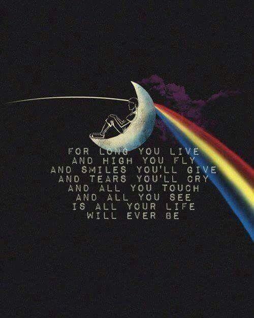 Pink Floyd - Page 2 2206da17dbf1da19ccc64c6c4a6cb509