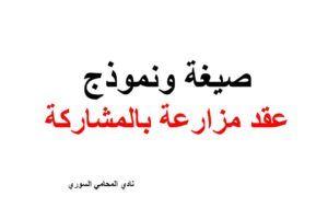صيغ العقود و الدعاوي Archives نادي المحامي السوري Arabic Calligraphy