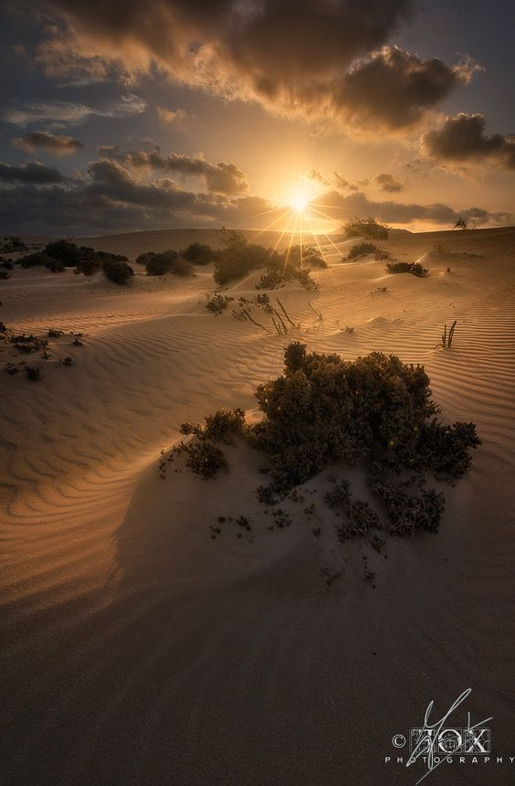 A sunset taken in the desert of Corralejo in Fuerteventura when light changing fast. The extreme windy conditions of this beautiful land are alittle pesky to photograph due to the continuos changings.