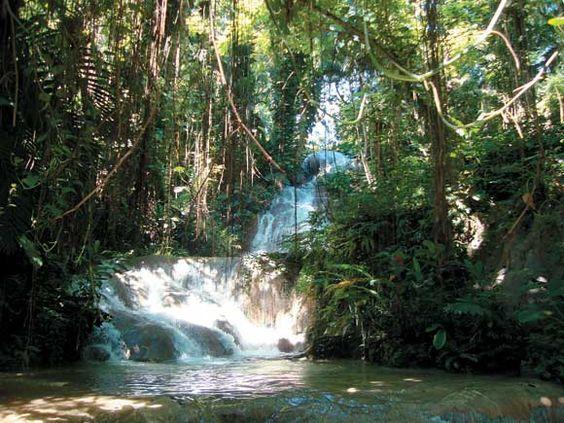 ocho rios gardens and mariage on pinterest