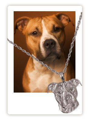 Pet Memorial Jewelry 3-D Pendant or Charm kinda pricy but cool way to memorialize a pet