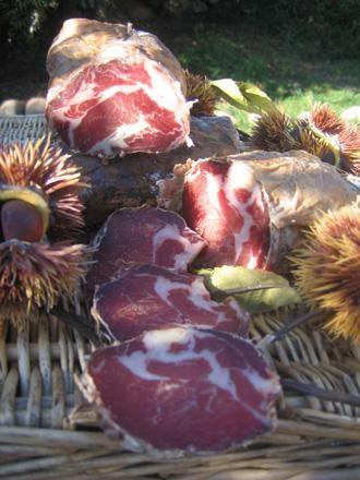 Ferme du fesquet porc sous les chataigniers- ruche de codognan