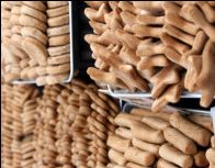 How to -- Dog Bakery Business.  site has lots of wheat recipes--NOT good for dogs.