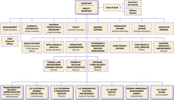 Los Zetas and Gulf Cartel Perpetrators of Mexican Drug Trafficking - blank organizational chart