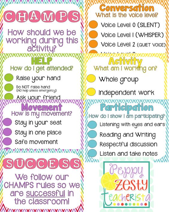 Manage your classroom expectations with this CHAMPS hanging poster. Click for the link to see it hanging in the classroom! Great space saver!