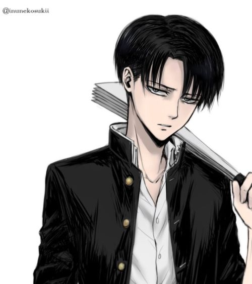 Levi (Anime) | Attack on Titan Wiki | FANDOM powered by Wikia