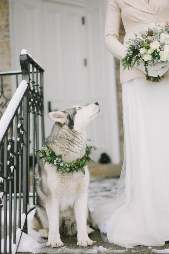 222e3044d54fd39897b94ce787cbdfe4 Зимняя свадьба: советы, рекомендации и примеры для вдохновения