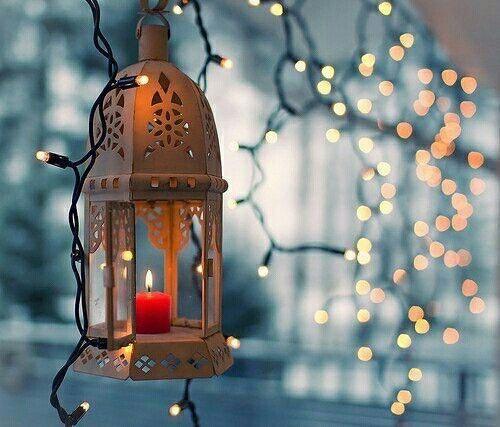صور وخلفيات فوانيس رمضان Lantern With Fairy Lights Fairy Lights Flower Wallpaper
