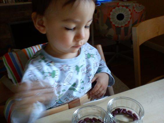 Smiling like Sunshine: Montessori activities for toddlers(1)