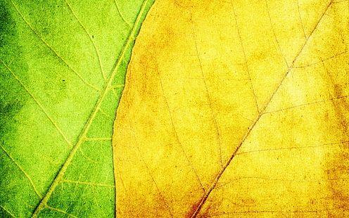 Sheet Strip Light Background Texture 1080p Wallpaper Hdwallpaper Desktop Simple Wallpapers Textured Background Green Wallpaper Hd wallpapers 1920x1080 light green