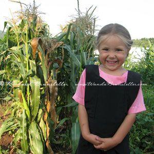 AmishWords-HappyTimesInTheGarden