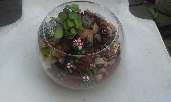 Este  terrario o  Mini  jardín  lo  hice con  suculentas y cactus de mi  jardín  Y  fue a pedido !!!