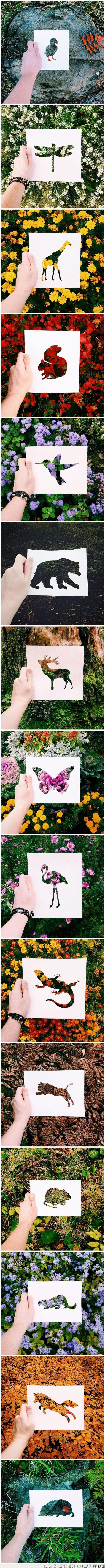 Los mejores colores siempre los pone la naturaleza