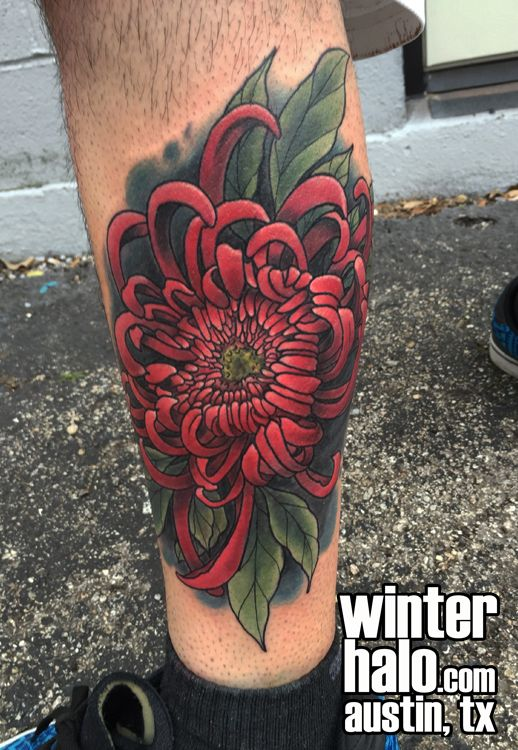 Neo Traditional Japanese Spider Mum Tattoo By Chris Hedlund Watercolor Tattoo Tattoos Best Artist Art Mum Tattoo Traditional Tattoo Mum Chrysanthemum Tattoo