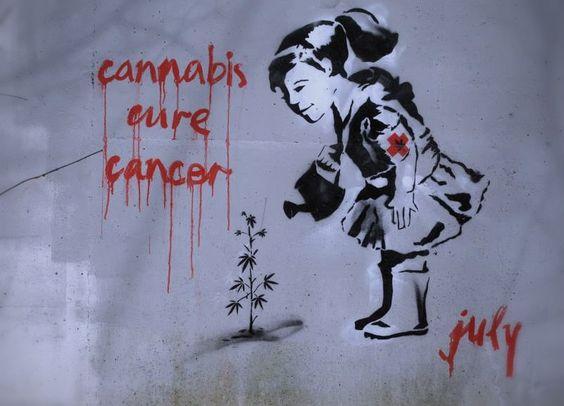 cannabis cure cancer