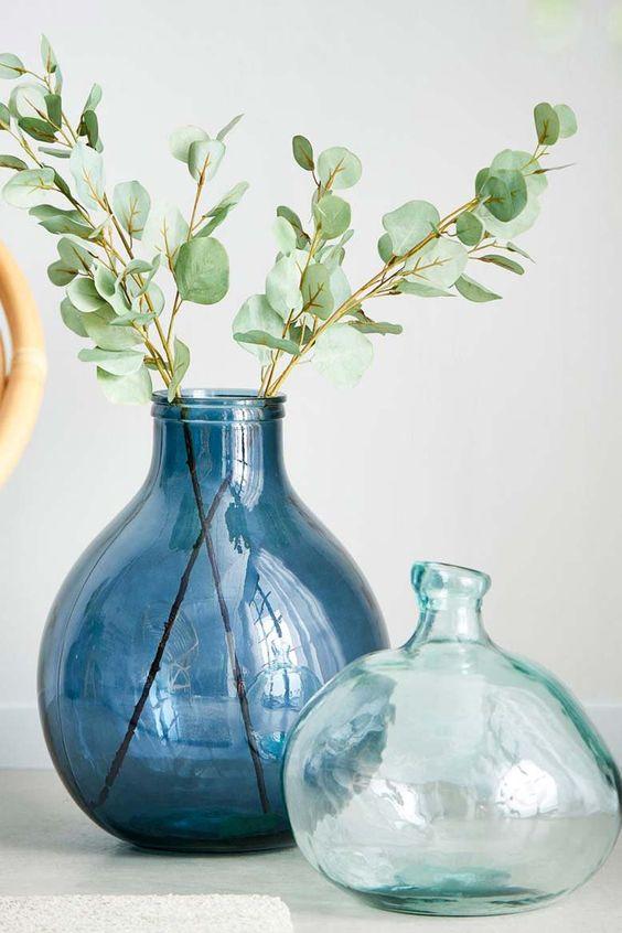Plante exposée dans une Dame Jeanne bleue