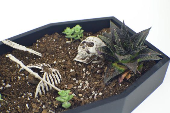 Coffin Planter Halloween Decorating Idea | A spooky garden craft you need to make this Halloween!