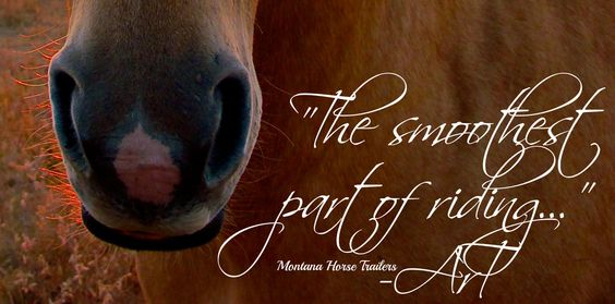 """Sitting some trots may be the roughest part of riding, BUT THIS SPOT is ALWAYS """"The Smoothest Part of Riding..."""" -Art & Montana Horse Trailers"""