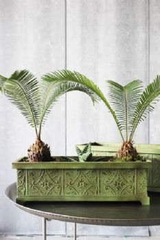 Decorative Green Planters - Set of 2