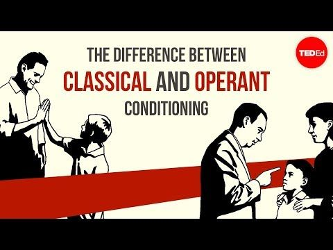 The Difference Between Classical And Operant Conditioning Peggy